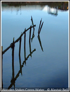 Alastair Bell_Wooden Stakes Conns Water.