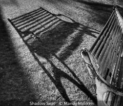 Mandy Milliken_Shadow Seat.jpg