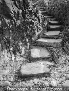 Leanne Simpson_Shady steps.jpg