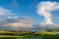 Harry Graham_Strangford Lough.jpg