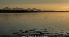 Leanne Simpson_Towards the Light.jpg