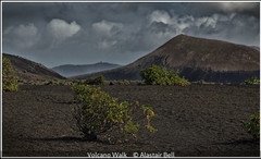Alastair Bell_Volcano Walk.jpg