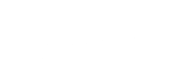 VisionEssentials Logo2WHITE.png