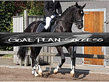 paard en plan.jpg