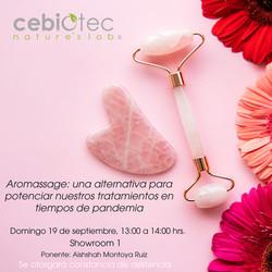 Showroom - Talleres CEBIOTEC