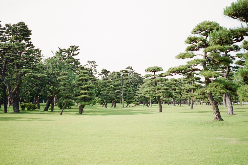 Tokyo Imperial Palace, Japan 2015