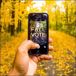 fall vote