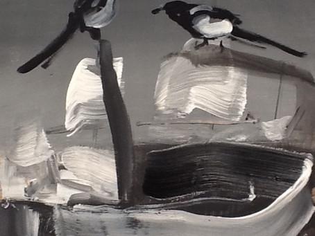 Lisboa Birds