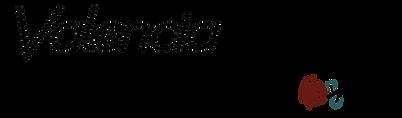 VJ logo small.png