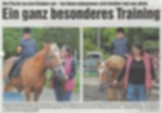 Zeitung01.PNG