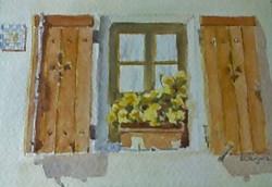Flower Box in Window