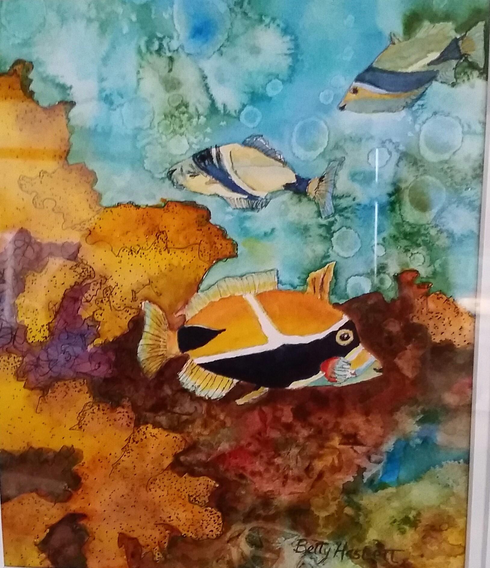 fish-bh