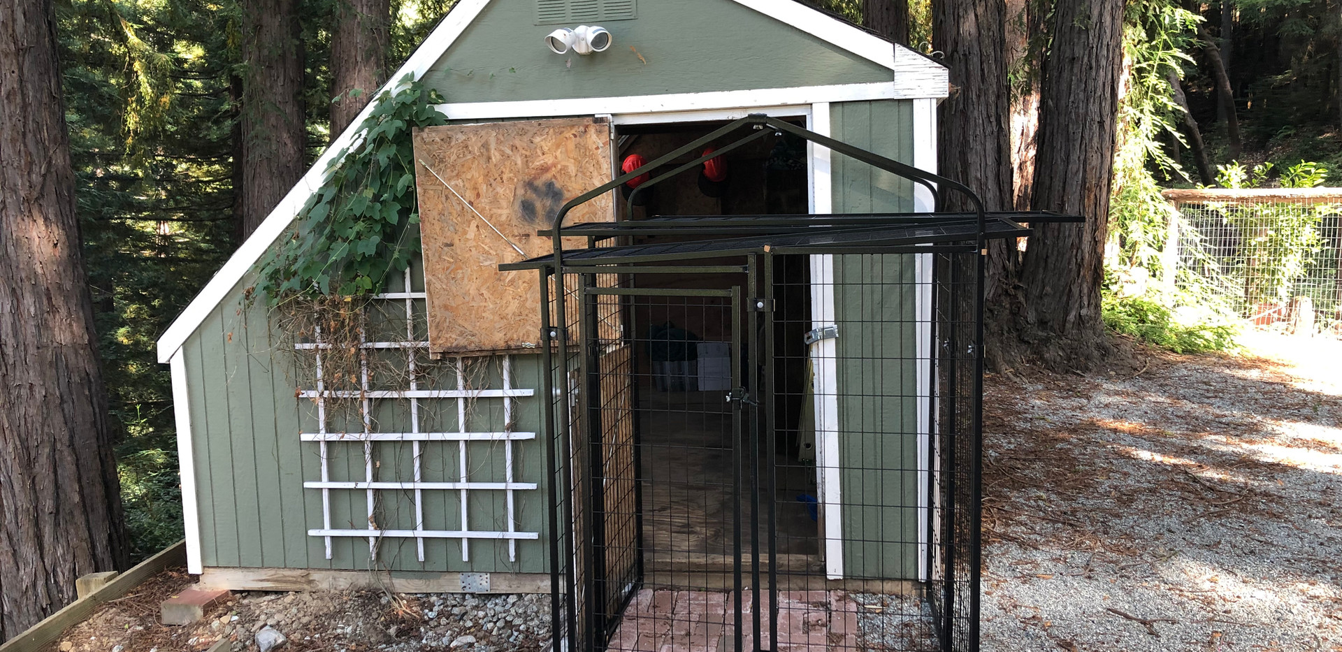 Shed with dog kennel attached