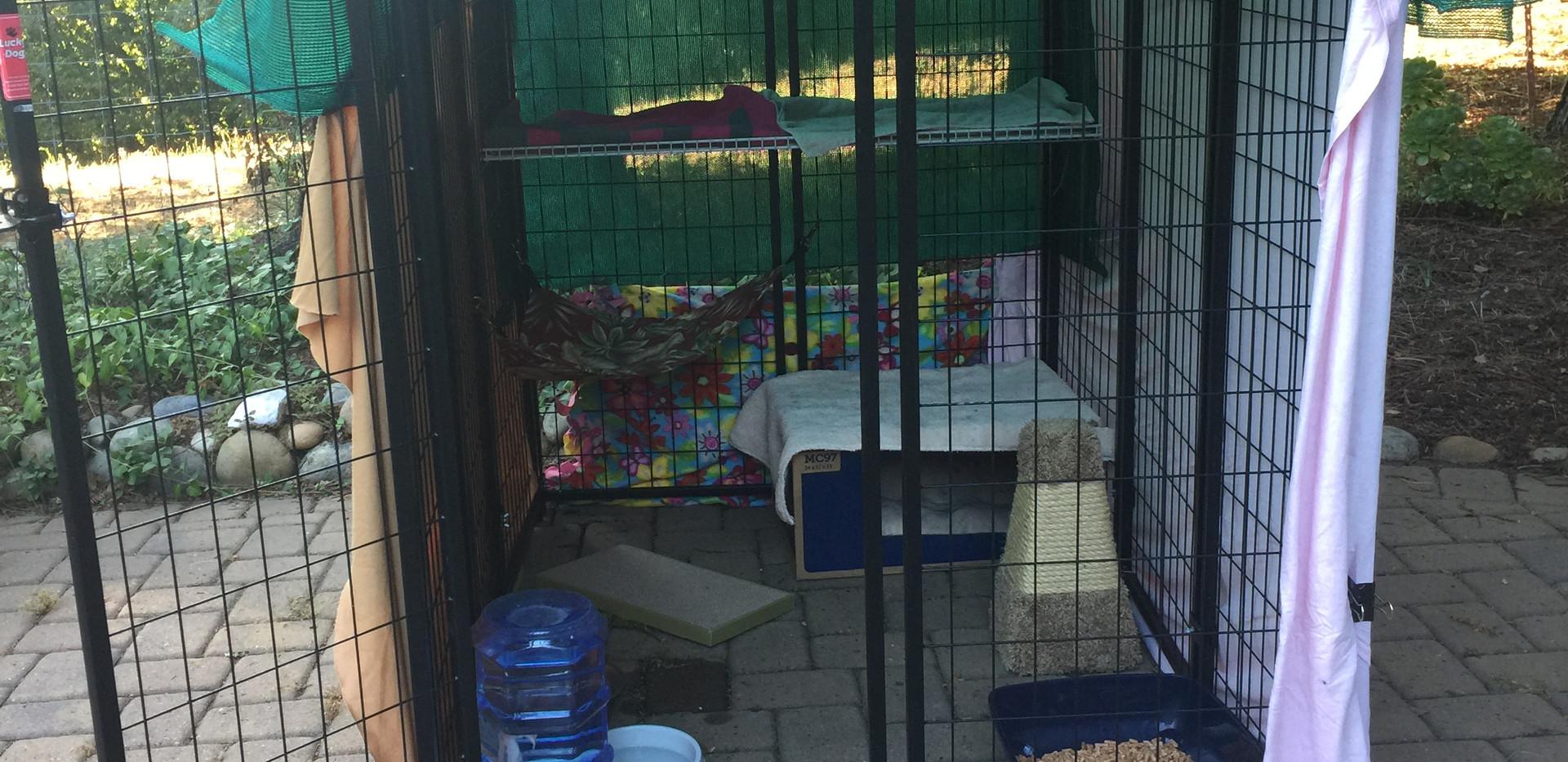 Kennel set up