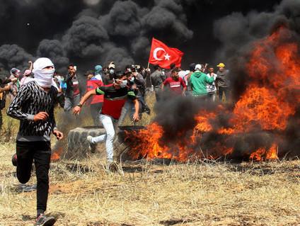Palestine / Israel
