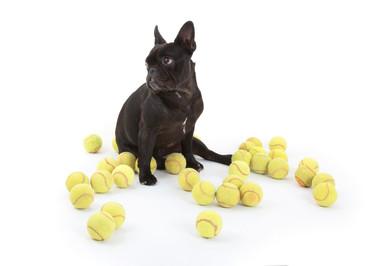 En mur og en tennisbold - hvor nemt kan det være?!