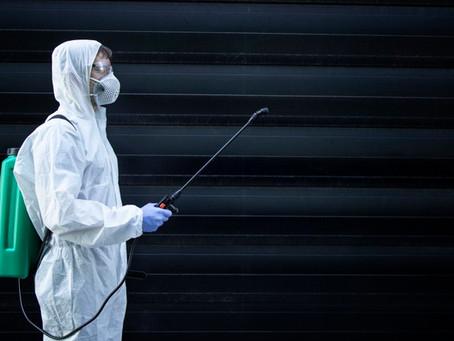A importância do Controle de Pragas durante a Pandemia