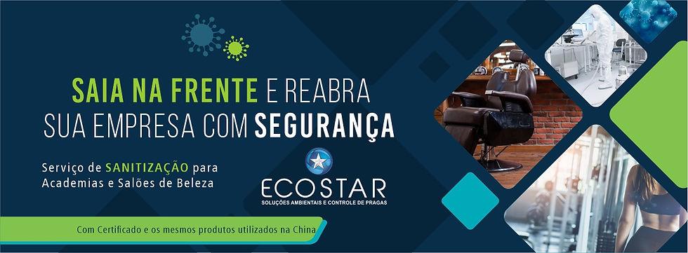 Ecostar.jpg