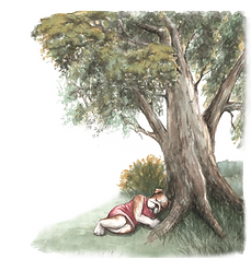 Picture1 l and tree.png