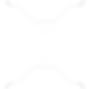 logo -white.png