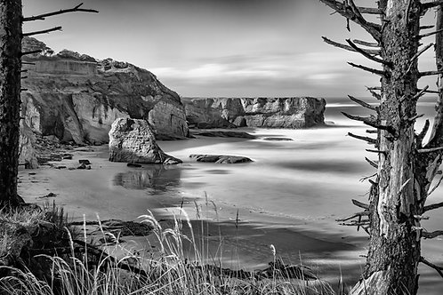 Otter Crest Beach II, prints and cards by Mark Anderson