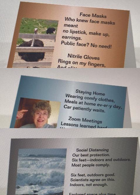Corona Series, pack of three Haiku cards by Judy Fleagle
