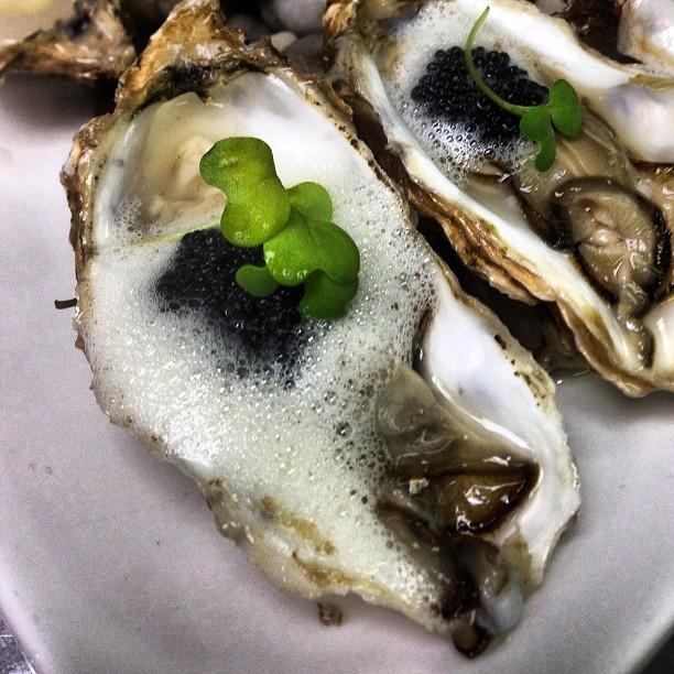 alaska oysters