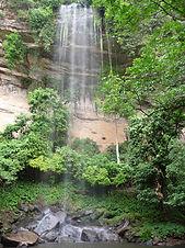 guineawaterfall.jpg