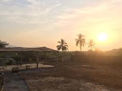 sunsetguinea