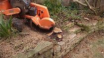 Stump Remoals Hobart