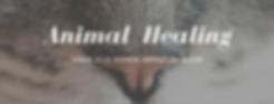 Animal Healing.png