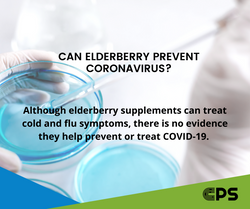 CPS_Elderberry Coronavirus