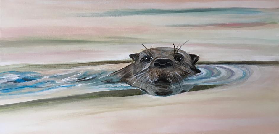 Sam the Otter