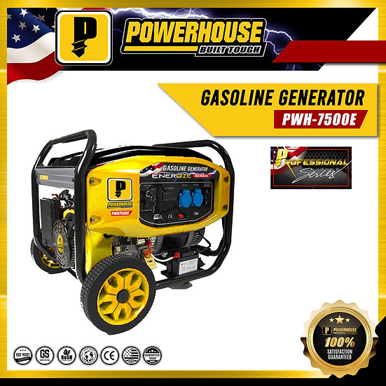 Gasoline Generator (PWH7500E)