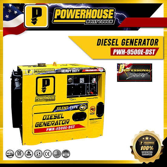 Diesel Generator (PWH-9500E-DST)