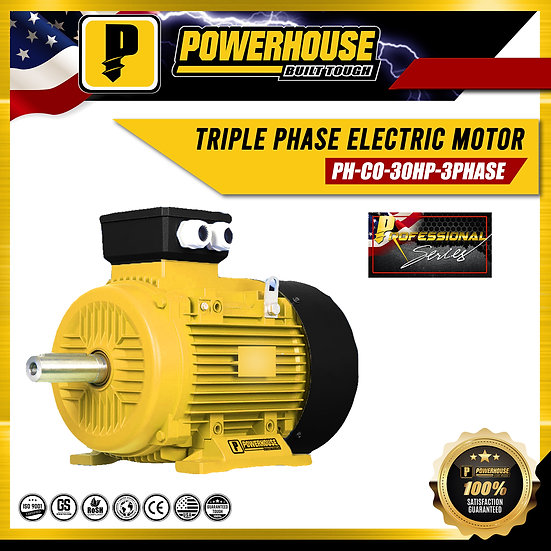 Heavy Duty 3-Phase Electric Motor
