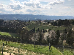 Steiermark19-3.jpg