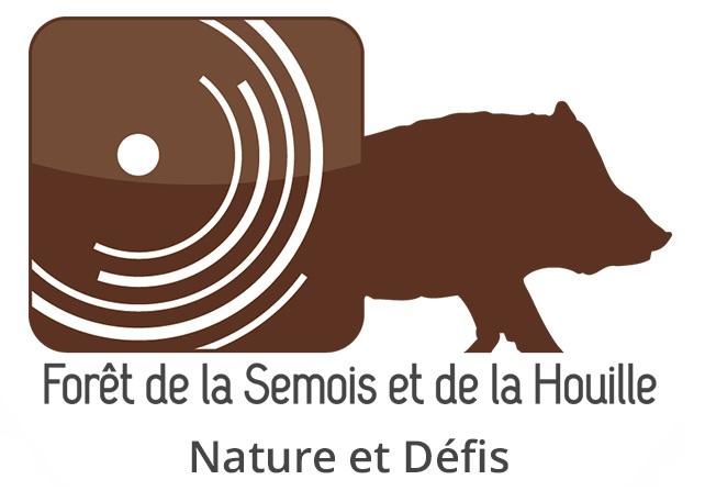 Foret de la Semois