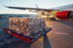avion de carga.png