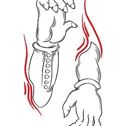 Simha limbs
