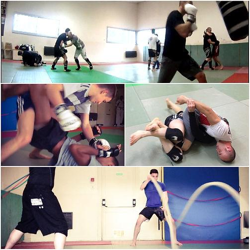 MMA discipline.jpg