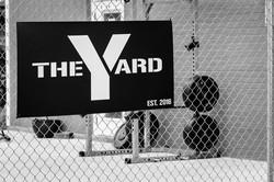 the yard.jpg