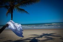 Bahia_-_Ilhéus.jpg