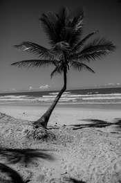 FotosAdrianoAdriao_Bahia_Ilhéus_20160508