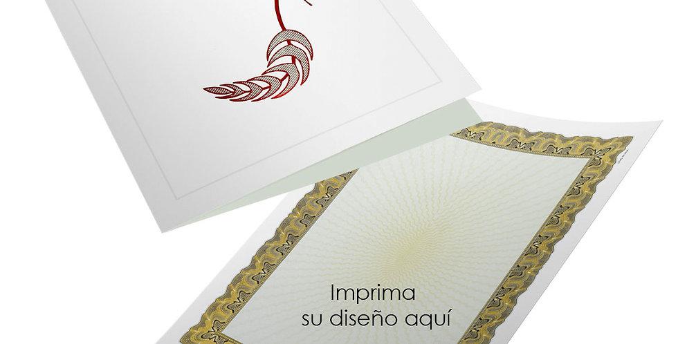 Carpeta porta diploma rojo