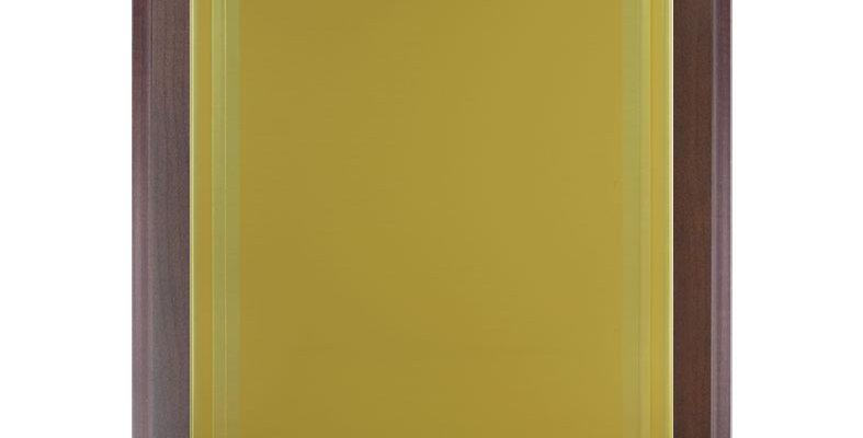 Placa serie 83133G2T