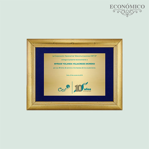 Marco Económico C610