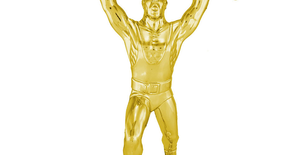 Figuras para trofeos, Trofeos de levantamiento de pesas, Pesas, Torneo de Pesas