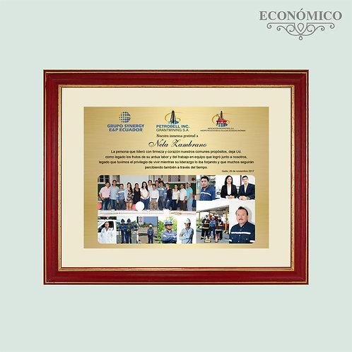 Marco Económico 897
