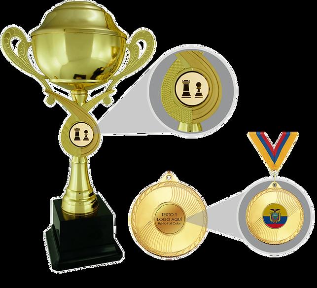 Trofeo-con-inserto.png
